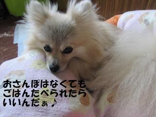 IMG_4860.JPG