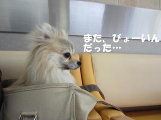 IMG_6709.JPG