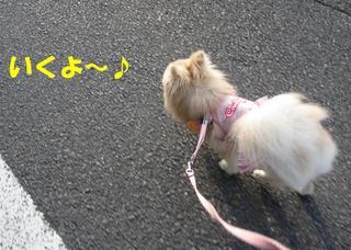 photo 001.jpg