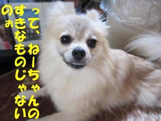photo 002.jpg