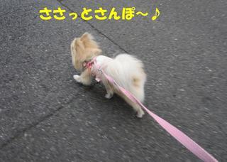photo 003.jpg