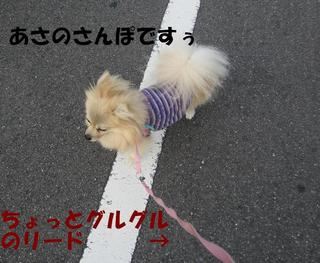 photo 004.jpg