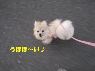 photo 005.jpg