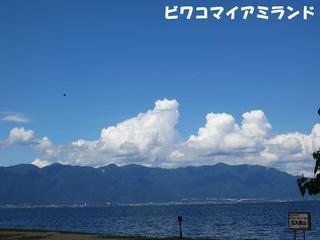 photo 028.jpg