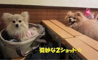 photo 072.jpg