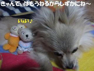 photo 076.jpg