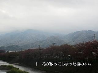 photo 283.jpg